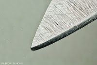 macro photos of everyday objects - knife