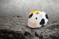 Kingston Launches Limited-Edition 2021 Mini Cow USB Drive in Philippines